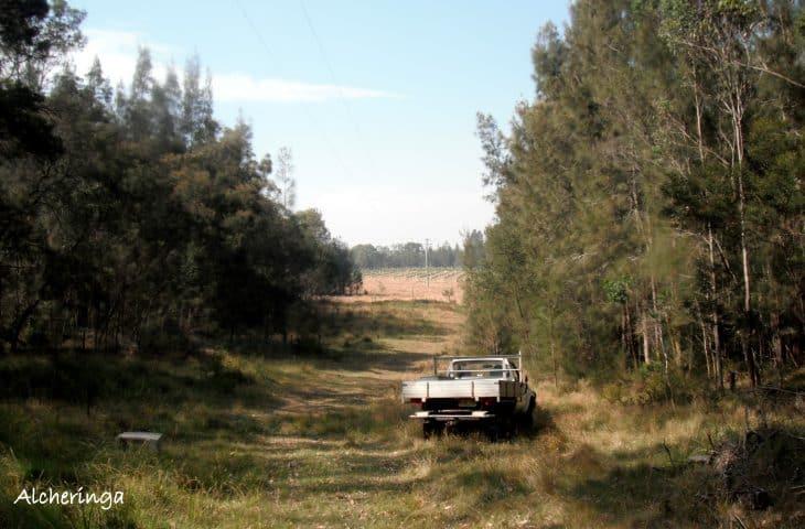 Un Wwoof à Moruya au sud-est de l'Australie