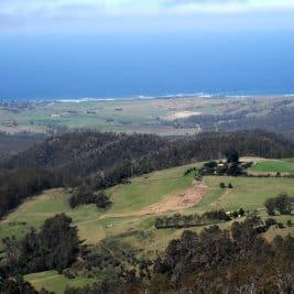 Exemple de Wwoof en Australie (Tasmanie)