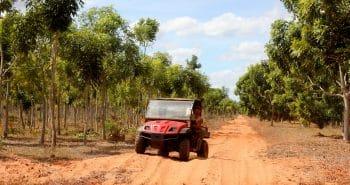 Nouveau job en Australie en foresterie