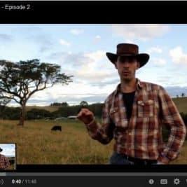 Vidéo sur notre projet Alcheringa