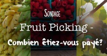 Sondage 1 Alcheringa.fr - Fruit picking Combien Etes-vous payé